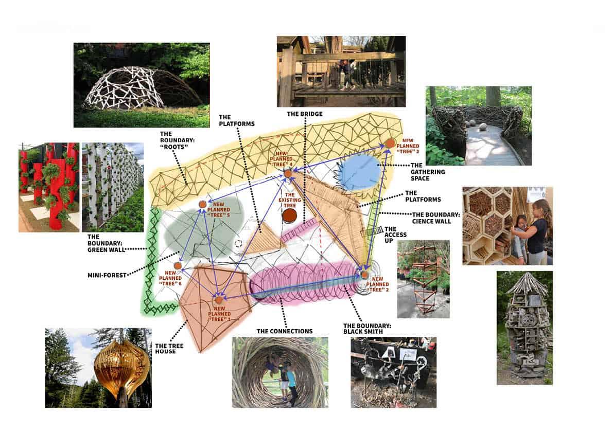 XUL-King Alfred School-Forest Plan
